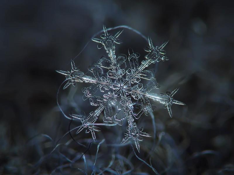 snowflake-closeup-diy-setup-alexey-kljatov-2